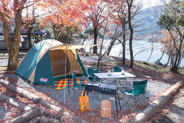 泊まる|芦ノ湖キャンプ村